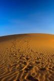 дюна над заходом солнца песка Стоковое фото RF