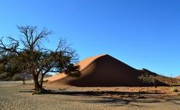 Дюна 45, Намибия Стоковое Изображение