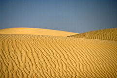 дюна Оман пустыни зашкурит wahiba Стоковое Изображение RF
