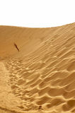 Дюна пустыни Сахары Стоковое фото RF
