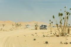 Дюна сафари виллисов традиционная Bashing al Khali 6 протиркой пустыни Омана Ubar туристов Стоковая Фотография