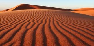 дюна Стоковое Изображение RF