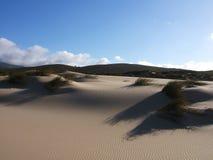 дюна Стоковая Фотография RF
