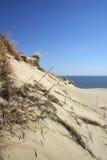 дюна Стоковые Фотографии RF