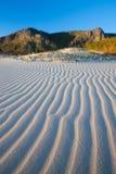 дюна bettys пляжа залива Стоковые Фотографии RF