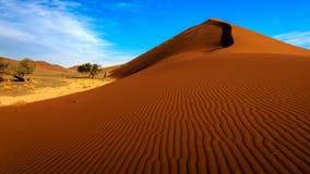 Дюна 45, Sossusvlei, Намибия Стоковые Фото