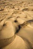 дюны большой np colorado зашкурят Стоковая Фотография RF