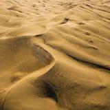 дюны большой np colorado зашкурят Стоковое Фото