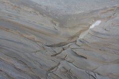 Дюны в зиме на рождестве Стоковые Изображения RF