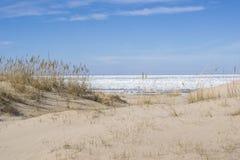 Дюны в предыдущей весне в Jurmala Стоковые Фото