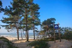 Дюны в Palanga Стоковое Изображение RF