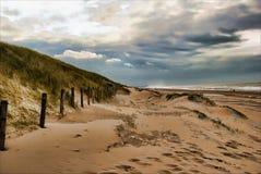 дюны Голландия стоковые изображения rf
