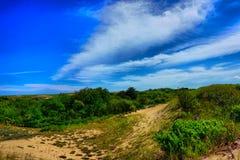 Дюны лета на пляже острова сливы Стоковая Фотография RF