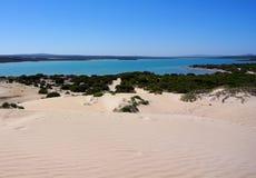 Дюны завальцовки & полуостров голубого океана, Eyre Стоковая Фотография RF