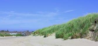 Дюны и море на Северном море Стоковые Изображения RF