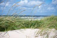 Дюны и море Стоковое Изображение
