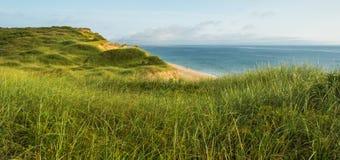 Дюны и трава пляжа Стоковые Фотографии RF