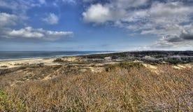 Дюны на голландском побережье стоковая фотография