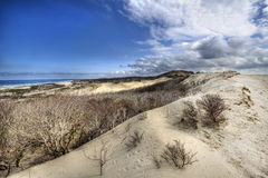 Дюны на голландском побережье Стоковые Изображения RF
