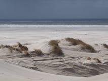 Дюны на пляже от amrum острова стоковые фотографии rf