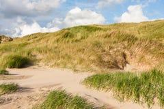 Дюны на Северном море Стоковая Фотография RF