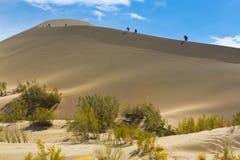 Дюны панорамы ландшафта пустыни Стоковые Фото