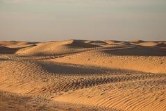 Дюны песка в пустыне Стоковые Фото