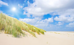 дюны пляжа Стоковая Фотография RF