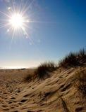 дюны пляжа Стоковые Изображения