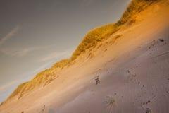 дюны пустыни составов Стоковые Фото