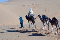 дюны пустыни Стоковое Фото