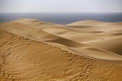Дюны пустыни Maspalomas Стоковые Изображения RF