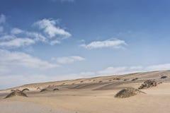 Дюны пустыни Namibe с вегетацией вышесказанного anisette стоковые фотографии rf