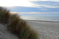 Дюны, пляж и море в Зеландии, Нидерландах Стоковое фото RF
