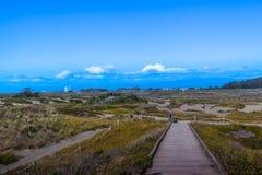 Дюны Самоа в Eureka Калифорнии стоковые фотографии rf