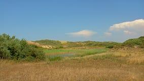 Дюны с кустарниками и озеро вдоль опалового побережья Северного моря во Франции, на солнечный день стоковое фото