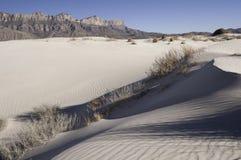 Дюны таза соли в национальном парке гор Guadalupe стоковое изображение rf