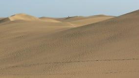 дюны Стоковые Фотографии RF