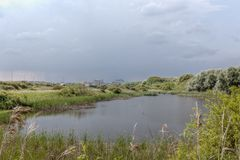 Дюны Blankenberge озера, Фландрия, Бельгия стоковое изображение