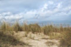 Дюны Cala Mesquida Стоковое Фото