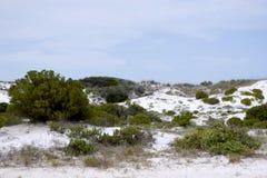 дюны i зашкурят белизну Стоковые Изображения RF