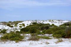 дюны ii зашкурят белизну Стоковая Фотография