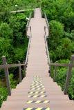 Длинная деревянная тропа поперек над джунглями Стоковые Изображения RF