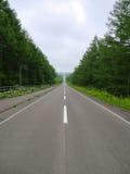 Длинная прямая дорога Kaiyodai в Хоккаидо, Японии Стоковое Изображение