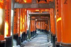 Длинная строка исторических стробов torri в Японии Стоковые Изображения