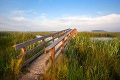 Длинний деревянный мост для велосипедов Стоковое Изображение RF