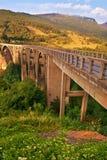 Длинний мост над Тарой Стоковые Изображения