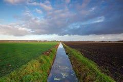 Длинний прямой рев Стоковая Фотография RF