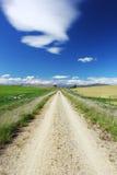 Длинное простирание грязной улицы, Новой Зеландии Стоковая Фотография