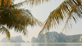 Длинной Ha прогулки города с пальмами Утесы и горы Вьетнам сток-видео